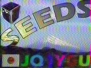 SEEDS SSTV Bild